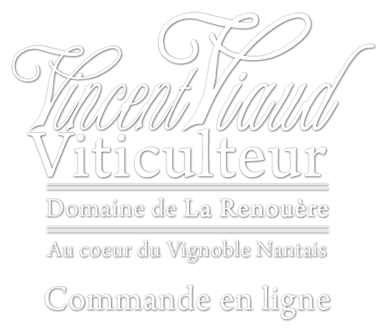 muscadet-vincentviaud